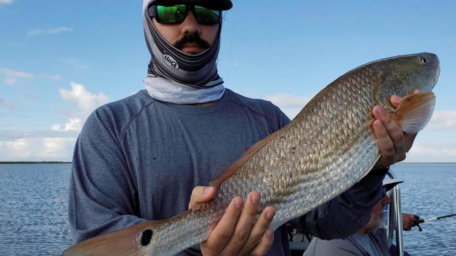 Cooling Rains, Redfish Mania!
