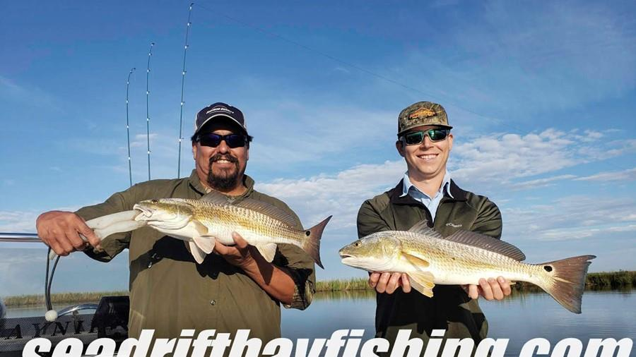 Fall Redfish Action