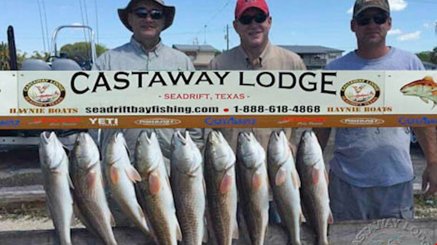 Fishing is steady to improving on cooling temperatures.